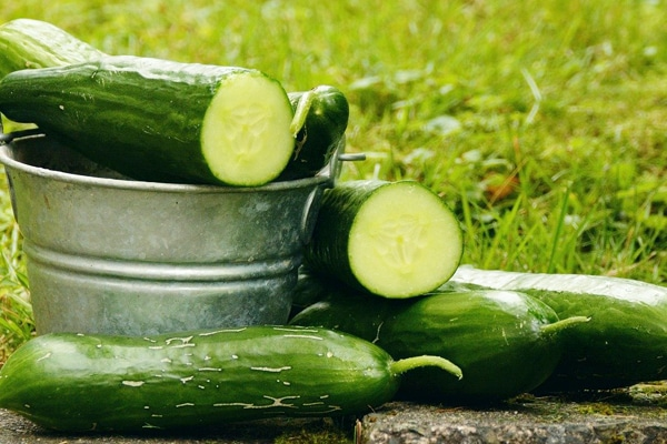cucumber with few calories