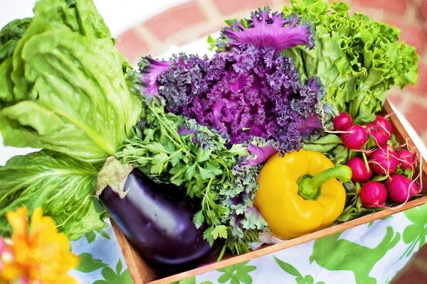lose weight with vegetable
